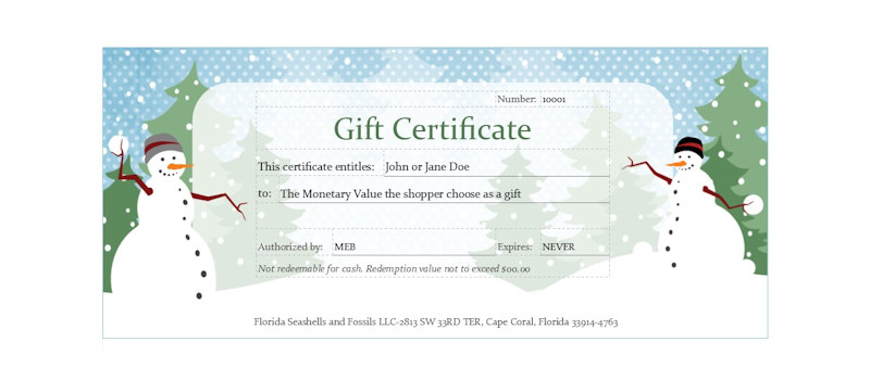 Florida Seashells & Fossils $100 Gift Certificate